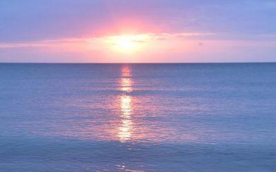 Ocean of Consciousness
